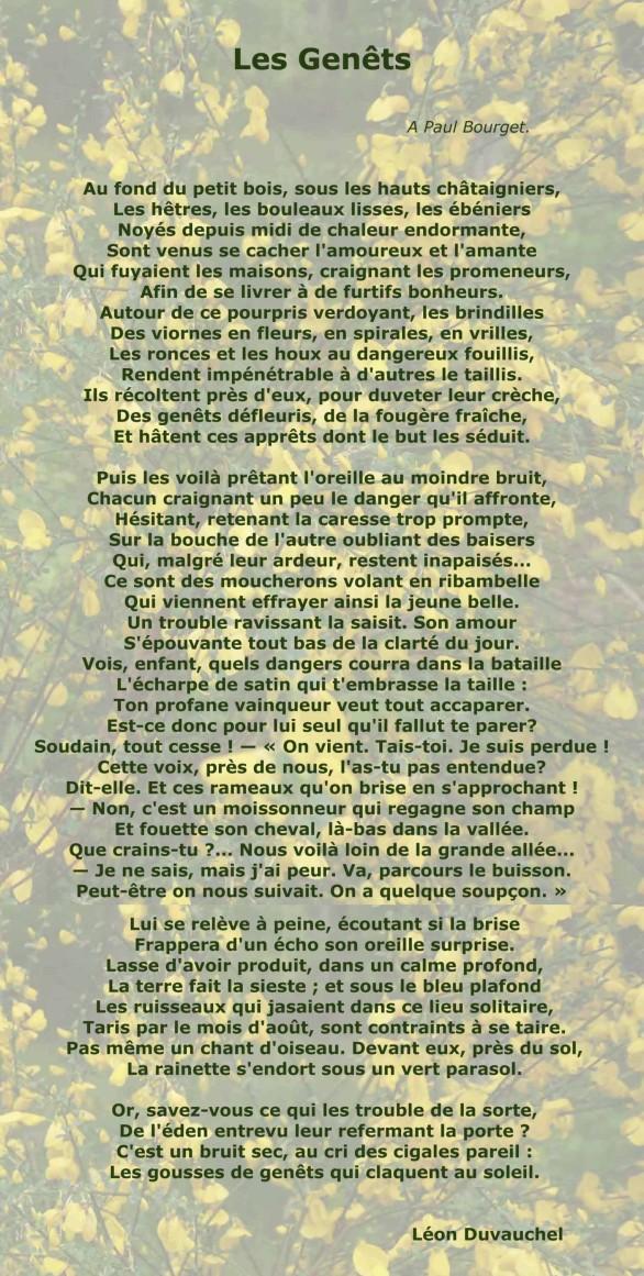 Duvauchel-Les-genets-poeme.jpg