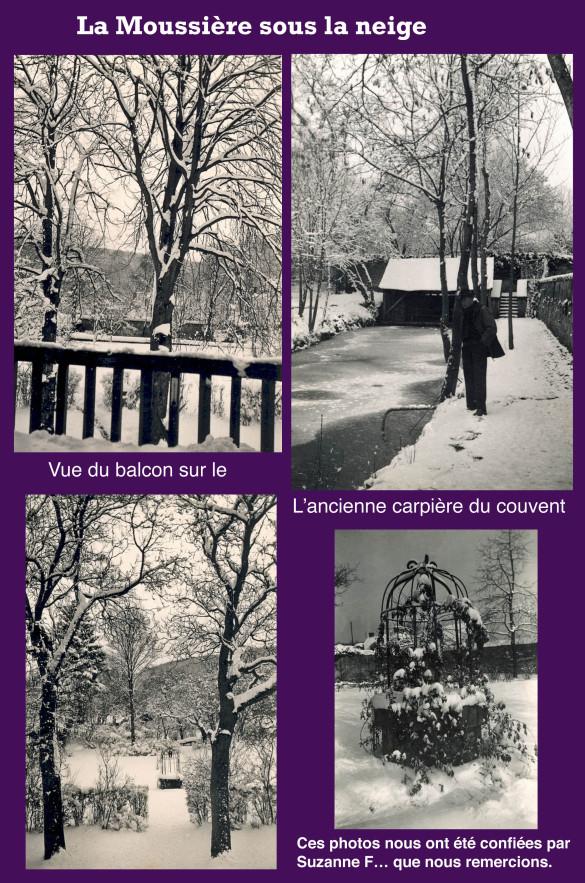 Vues-sur-La-Moussiere-3.jpg