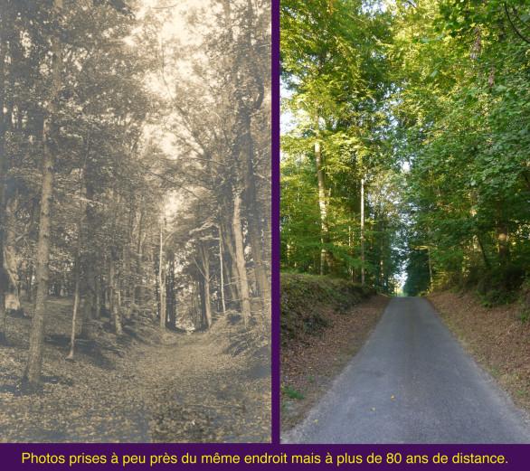 12bis-Route-du-Parquet.jpg