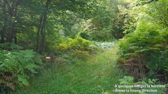 15-Le-chemin-d-Orrouy.jpg
