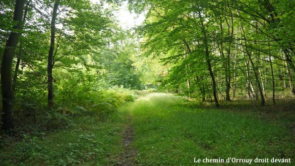 16-Le-chemin-d-Orrouy.jpg