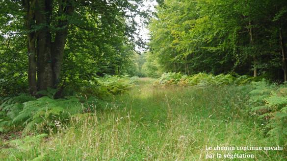 19-Chemin-d-Orrouy.jpg