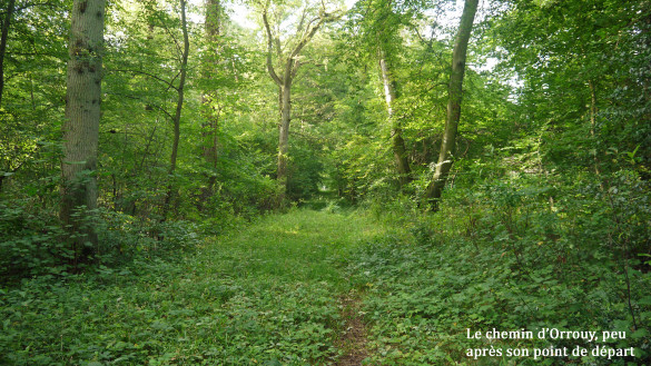 2-Le-chemin-d-Orrouy.jpg
