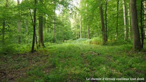 24-Chemin-d-Orrouy.jpg
