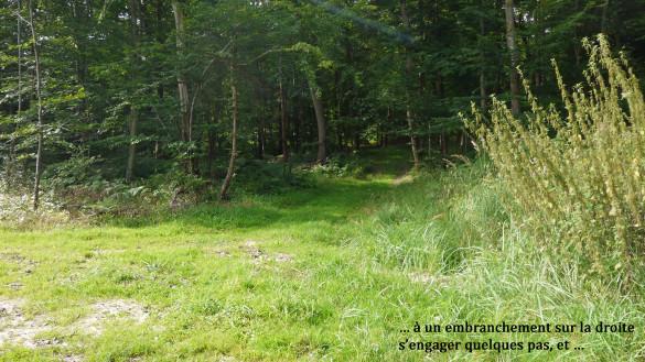 33-Chemin-d-Orrouy.jpg