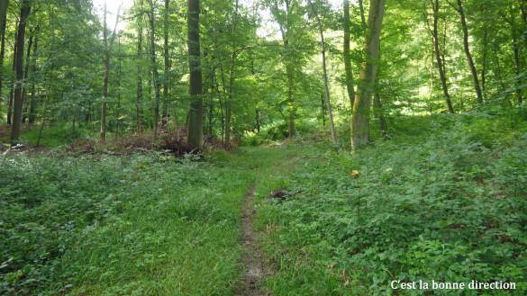 35-Chemin-d-Orrouy.jpg