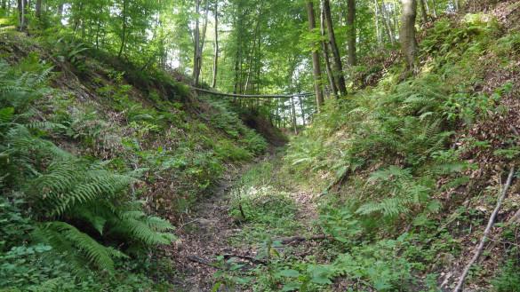 38-Chemin-d-Orrouy.jpg