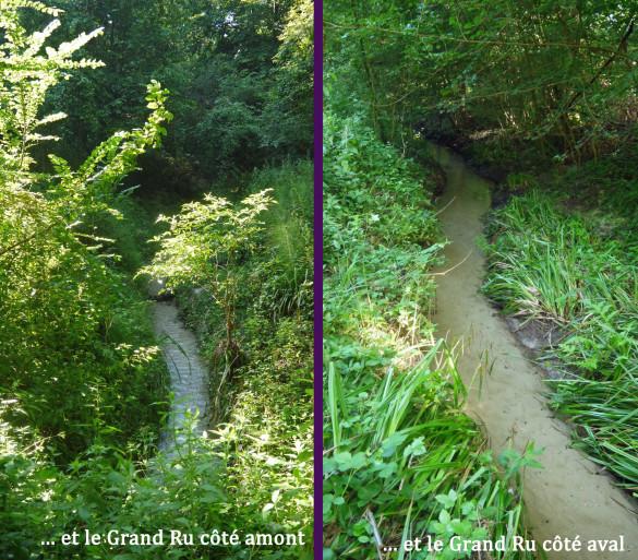 19-et-21-Chemin-du-Pont-Cardon.jpg