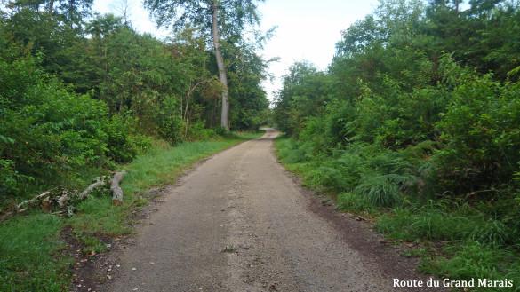 3-Route-du-Grand-Marais.jpg