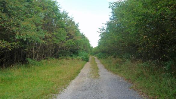4-Route-du-Grand-Marais.jpg