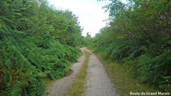 5-Route-du-Grand-Marais.jpg