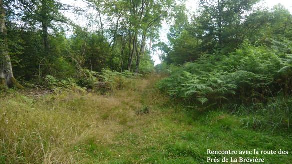 8-Route-du-Grand-Marais.jpg