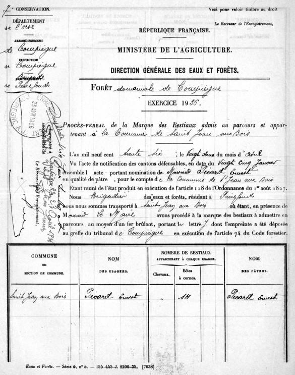 1936-PATURAGE en FORÊT-1